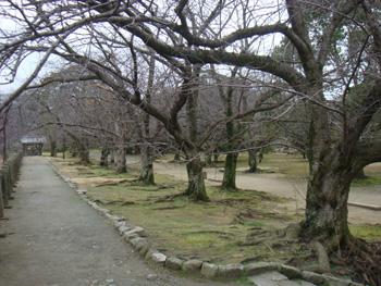 福岡市の舞鶴公園