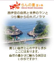 らんの里堂ヶ島 西伊豆の大自然と世界のらんとつり橋からの大パノラマ