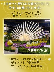 世界らん展日本大賞2010に今年も出展いたします。