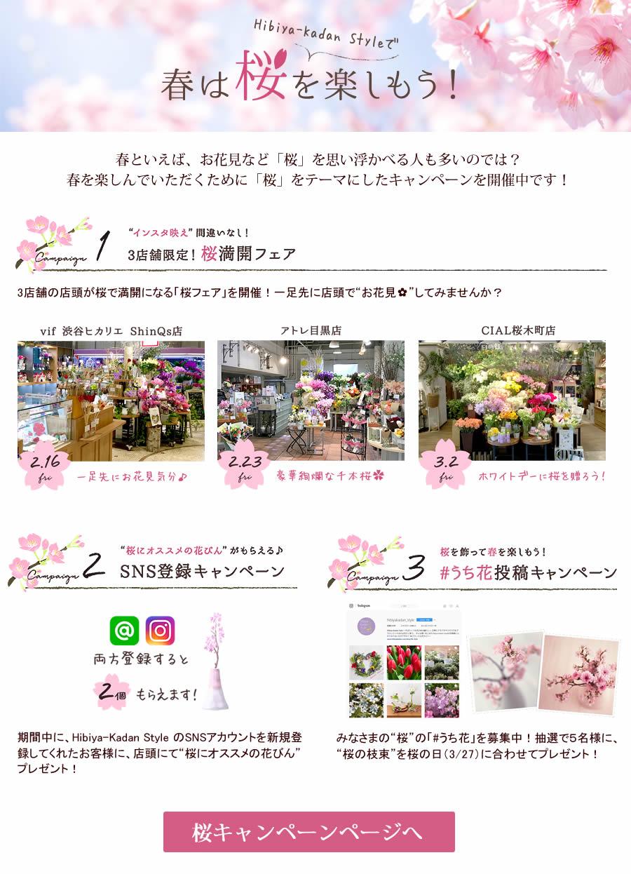 2018桜キャンペーン
